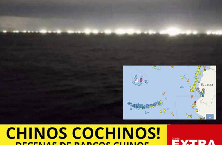 Chinos se llevan en peso pesca de Galapagos.